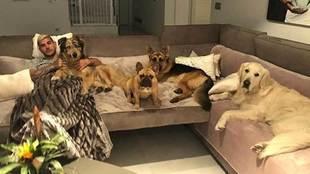 "Theo Hernández posando junto a sus cuatro perros: ""Roma, Kira,..."