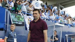 Asier Garitano, en el partido frente al Betis.