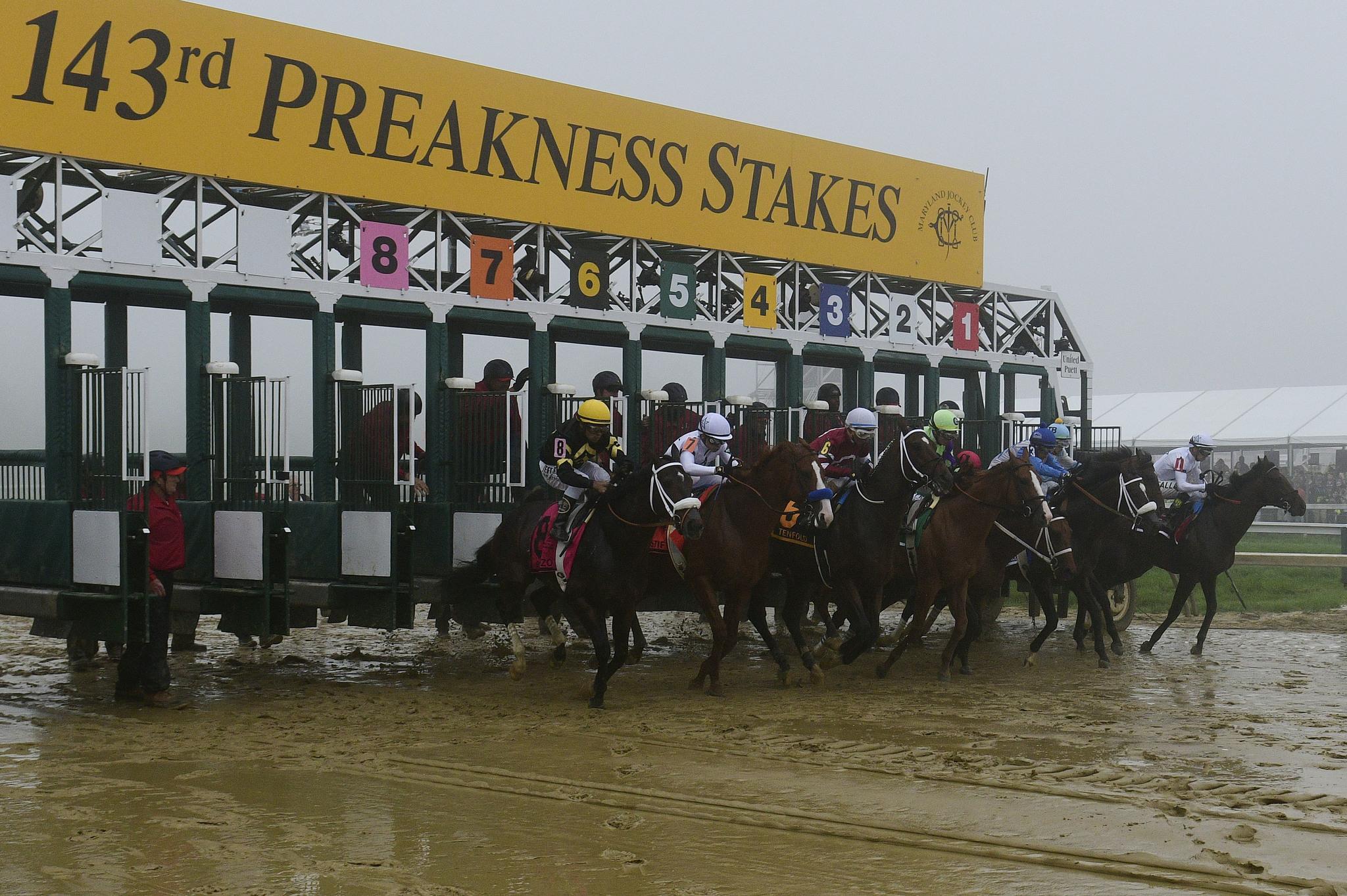 Inicio del Preakness Stakes.