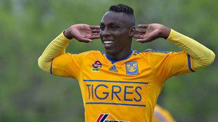 Julián Quiñones celebra un gol con Tigres