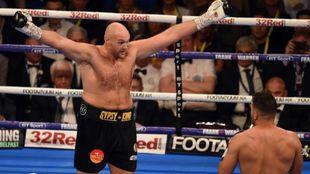 Tyson Fury en su último combate