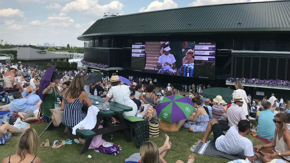 La afición en la famosa colina de Wimbledon