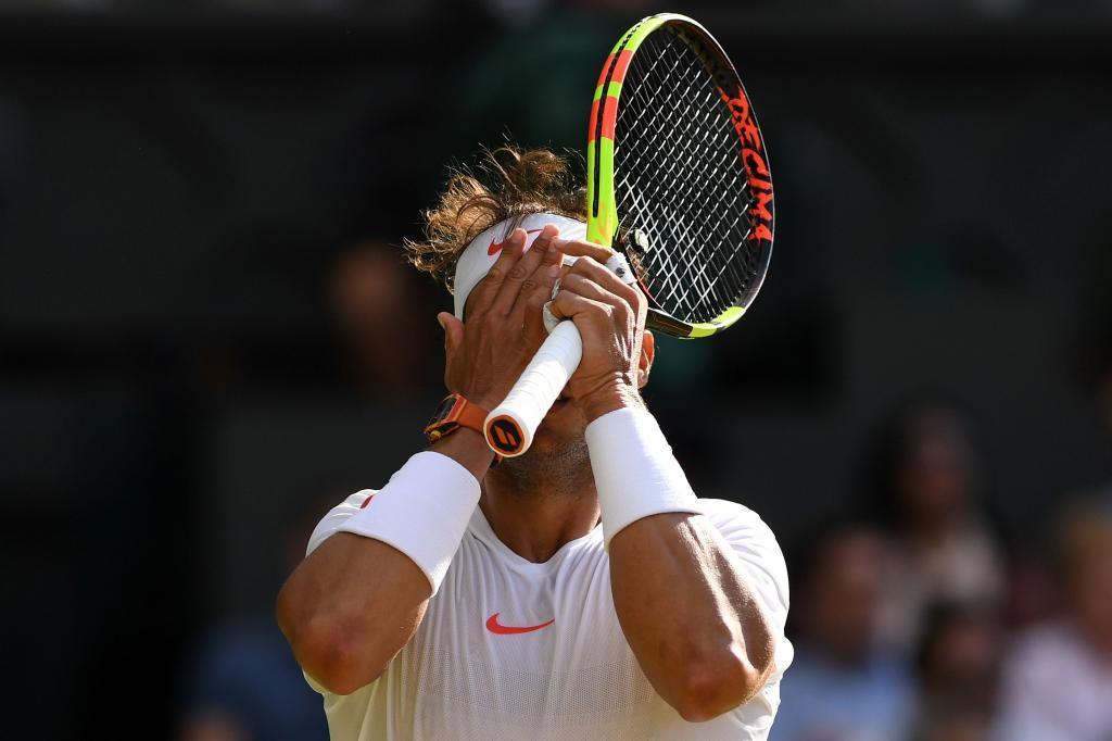 058cbe6b2d3 Wimbledon 2018  Del Potro vs Rafa Nadal. Resumen y resultado del ...