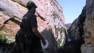 Agentes rurales patrullan la zona del Congost del Mont-rebei para...