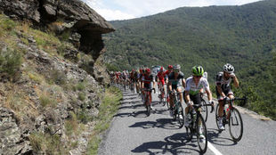 El pelotón, durante la etapa 14 del Tour de Francia