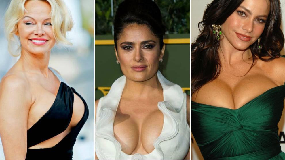 pamela anderson boobs natural or fake
