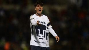 Mauro Formica deja a Pumas para jugar en Argentina.