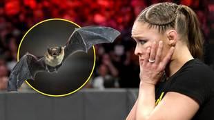 Ronda Rousey asustada por un murciélago en pleno combate de la WWE