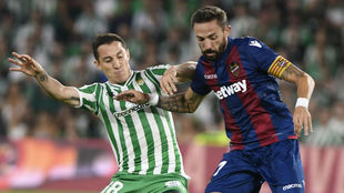 Morales lucha con Guardado por un balón.