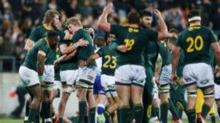 Los jugadores sudafricanos festejan el triunfo