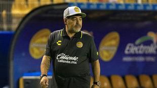 Dorados de Sinaloa vs Cafetaleros de Tapachula en vivo.