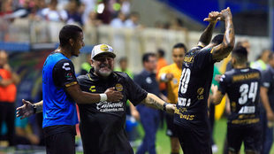 Maradona celebra con euforia el gol de Vinicio Angulo