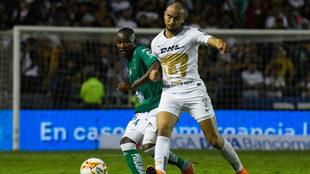 Los Pumas no han podido avanzar de los cuartos de final en la Copa