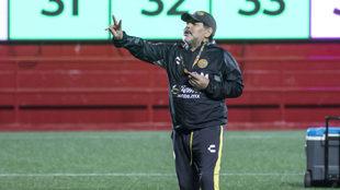 Diego Maradona se candidatea para el Tri.