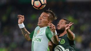 Dayro Moreno disputando un balón en la Copa Libertadores.