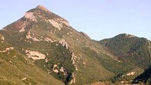Una imagen del Bassegoda