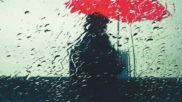 Imagen de la portada de la novela 'Patria' de Fernando Aramburu