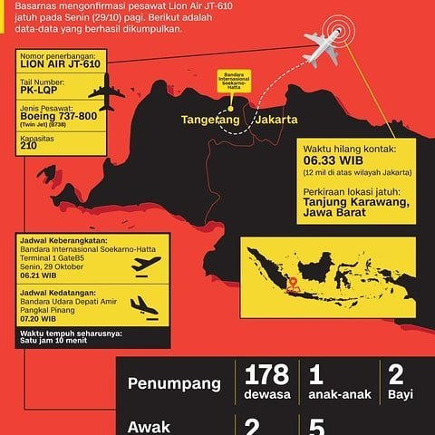 Se estrelló un avión con 188 pasajeros — Tragedia en Indonesia