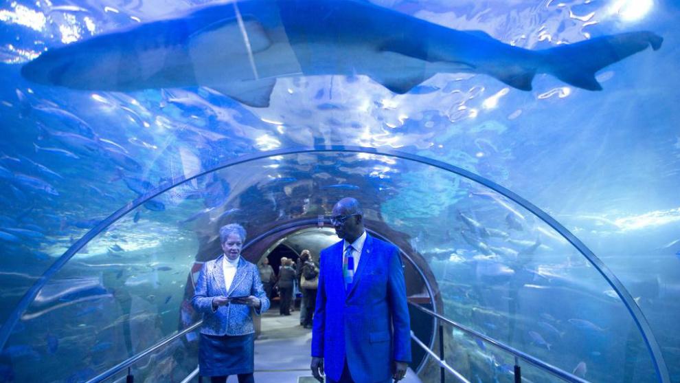 Bob Beamon posa junto a su esposa en el túnel de Aquarium mientras...