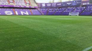 El césped de Zorrilla, tras el partido ante el Eibar