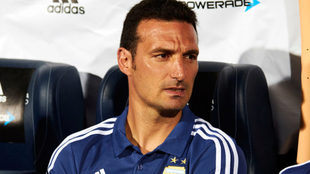 Lionel Scaloni, entrenador de Argentina