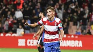 Pozo celebra uno de sus goles en Los Cármenes esta temporada