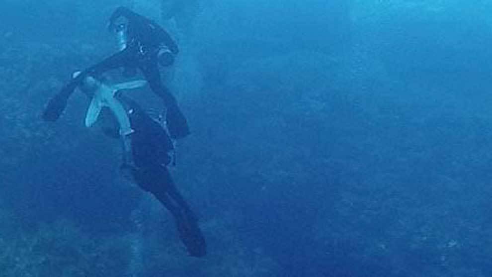 Dan White grabó el momento del ataque de un tiburón a un buzo...