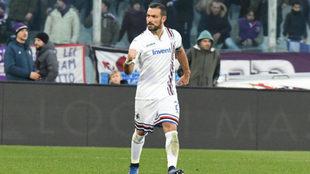 Quagliarella celebra su doblete a la Fiorentina.