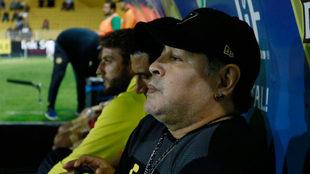 Los Dorados de Maradona caen en casa ante Cimarrones.