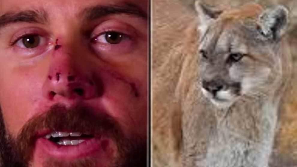 Travis Kauffman, el atleta que tuvo que matar a un puma para salvar la...