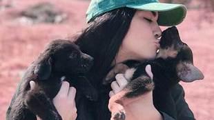 La colombiana Erika Fernández, presentadora estrella de Fox Sports en...