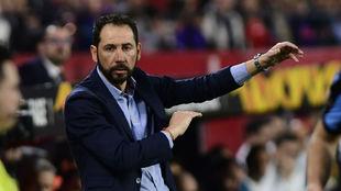 El técnico Pablo Machín (43) da indicaciones en el Sevilla-Lazio.