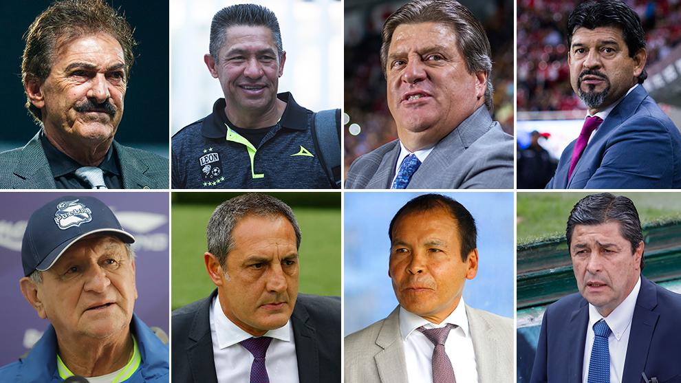 La Volpe, Ambriz, Herrera, Cardozo, Meza, Marini, Cruz y Tena, n el...