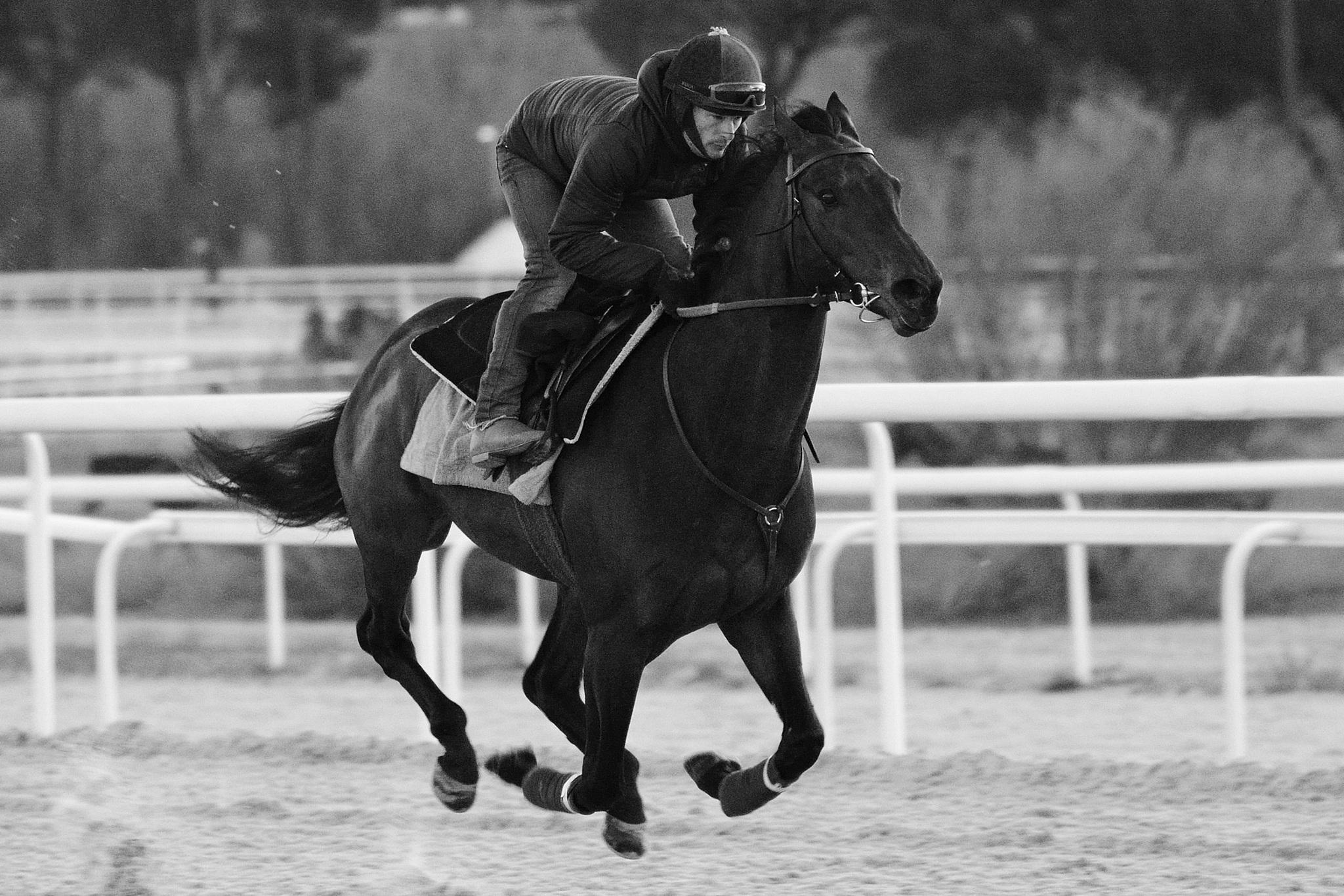 Oriental' en un entrenamiento con Borja Fayos.