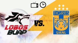 Lobos BUAP vs Tigres: Horario y dónde ver