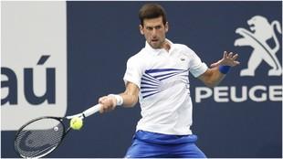 Djokovic, en un partido de este 2019.