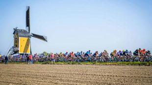 El pelotón, durante la Amstel Gold Race