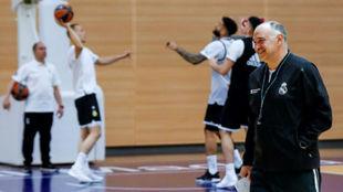 Pablo Laso, durante el último entrenamiento del Madrid antes de ir a...