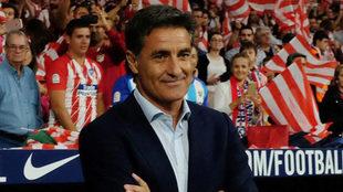Míchel, en un partido como técnico del Málaga ante el Atlético /