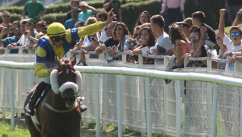 'Hipodamo de Mileto' fue el mejor caballo del 2018.