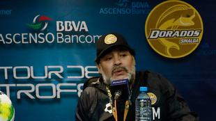 Maradona quiere seguir al frente de Dorados.