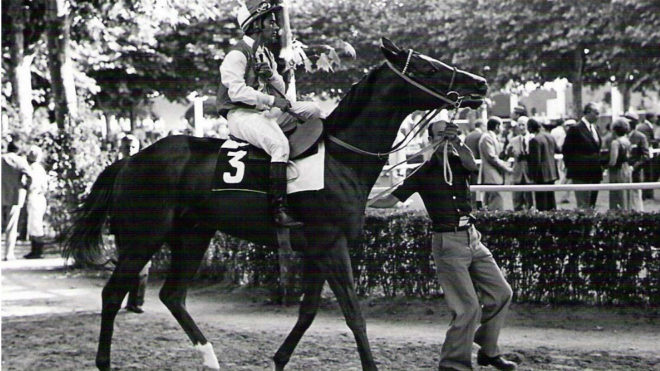 'Takir', con Román Martín, el último gran caballo de Beamonte,...