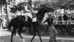 'Takir', con Román Martín, el último gran caballo de...