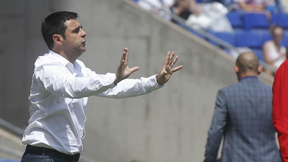 David Gallego: el mejor posicionado para suceder a Rubi