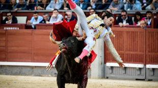 López Simón, cogido por el toro.
