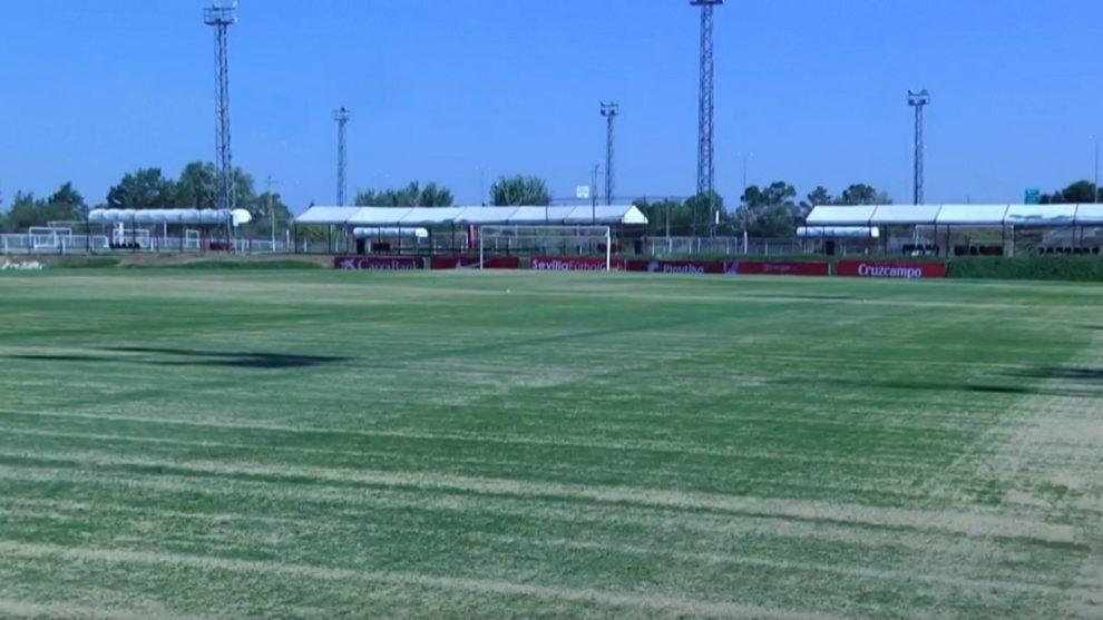Estado del césped de uno de los campos de la ciudad deportiva.
