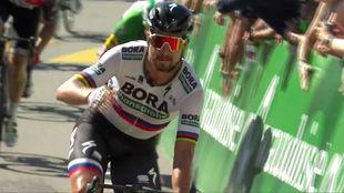 Peter Sagan, vencedor en Murte y nuevo líder de la Vuelta a Suiza.