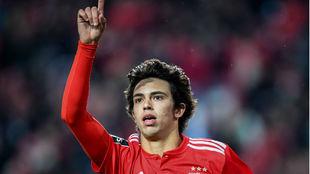 Joao Felix celebrating a goal for Benfica.