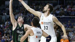 Ognjen Kuzmic intenta capturar un rebote con el Real Madrid