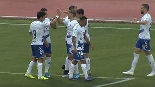 Los jugadores del Tenerife celebran el tanto del Malbasic.